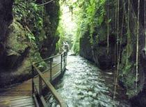 シアップ川