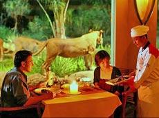 ライオンレストラン