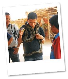 ヘビ巻き体験