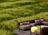 ソファー席から望む田園風景