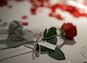 お名前入りのバラ