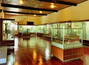 バリ博物館7