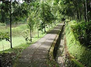 バトゥカル寺院6
