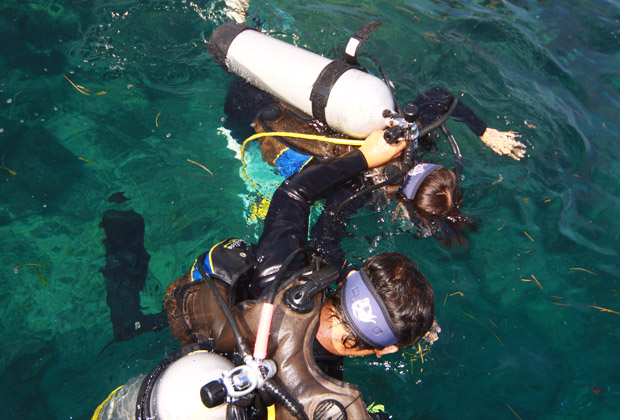 バリビューダイブセンター 体験ダイビング