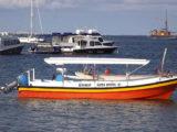 グラスボトムボート貸切