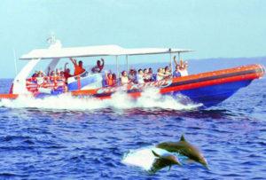 バリハイ オーシャンラフティング 3島クルーズ