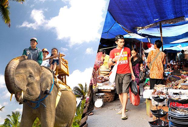 hi-elephant-camp-sightseeing