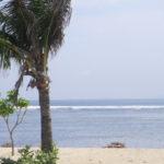 スリランカ(雨季)