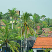 Bali Consultant