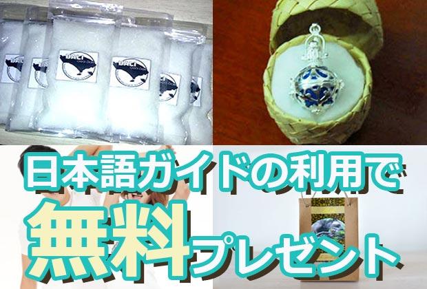 バリ島 観光日本語ガイドのご利用で素敵な無料プレゼント