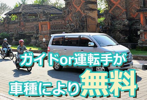バリ島 観光日本語ドライバー or 日本語ガイドが無料