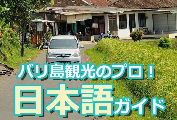 バリ島 観光わくわくのバリ島観光の日本語ガイドについて
